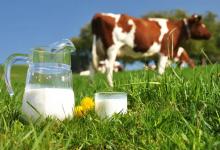 """Photo of Nueve empresas estarían """"adúlterando"""" leche en Colombia"""