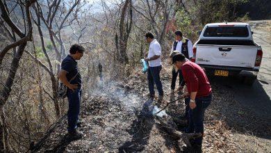 Photo of Conformadas brigadas comunitarias para prevenir y controlar incendios en la Sierra Nevada