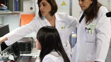 Photo of Inician pruebas con fármaco que bloquearía el Coronavirus