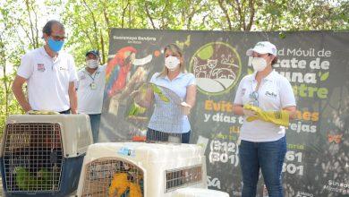 Photo of Alcaldía y Dadsa conmemoran Día del Medio Ambiente con liberación de fauna silvestre en la Sierra Nevada