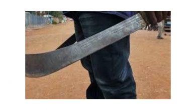 Photo of Por una tierra, dos familias se enfrentaron a machete en Pivijay