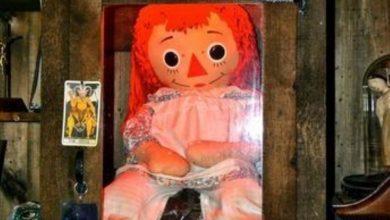 Photo of Annabelle se volvió tendencia mundial en redes sociales