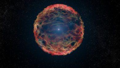 Photo of Una supernova pudo causar una grave extinción masiva en la Tierra