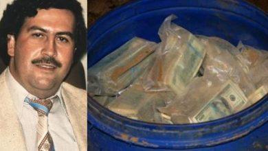 Photo of Hallan nueva caleta de Pablo Escobar llena de dólares