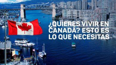 Photo of ¿Quiere irse a vivir a Canadá? Conozca los requisitos para emigrar y trabajar en el país