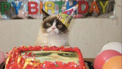 Photo of 15 personas se contagian de COVID-19 por asistir a fiesta de un gato